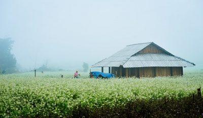 Địa điểm ăn uống vui chơi tham quan du lịch khách sạn nhà nghỉ phương tiện đi lại Sơn La